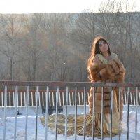 в лучах солнца :: Светлана Бурлина