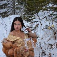 в ожидании праздника :: Светлана Бурлина
