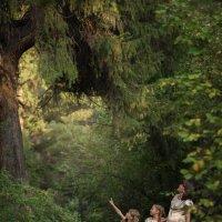 Сказочный лес :: Анна