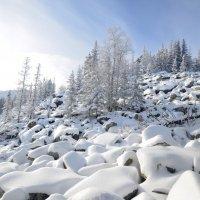 зима в горах 9 :: Константин Трапезников