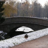 По первому снегу ... :: Татьяна