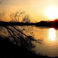 Шар уходящего солнца :: Андрей Снегерёв