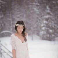 Зимняя сказка :: Anna Lashkevich