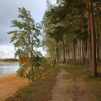 Осень :: галина северинова