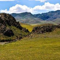степ в пустыни Гоби :: Георгий А