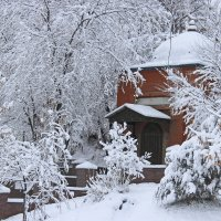 Зимой :: Ольга Акимова