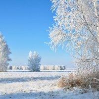 Зимний  простор :: Геннадий Супрун