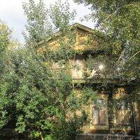памятник деревянного зодчества, Екатеринбург :: Елена Шаламова