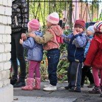 Детский сад на прогулке 3 :: Рита Куприянова