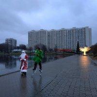 Не случайная встреча :: Андрей Лукьянов