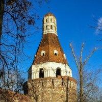 Москва. Симонов монастырь. :: Ирина
