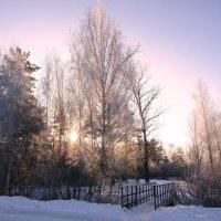 Зимой у мостика :: Андрей Снегерёв