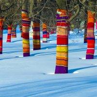 Чтобы деревьям было тепло :: Игорь Герман