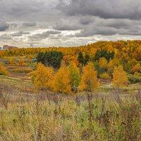 Московская осень... :: Владимир Жданов