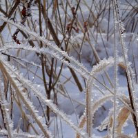 Зимние чудеса :: Зинаида Каширина