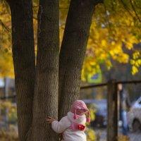 Пока деревья большие... :: Светлана Карнаух