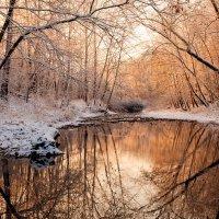 Морозным утром у реки... :: Alex ARt