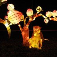 """Великие фонари Китая"" :: ИННА"