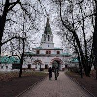 Передние ворота музея :: Марина Птичка