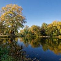 Осень в парке :: Дмитрий Емельянов