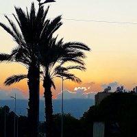 закат у горы Кармель :: Александр Корчемный