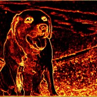 Собака Баскервилей... :: Vladimir Semenchukov