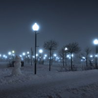 Времена года. Зима. Тихая ночь в декабре. Seasons. Winter. Quiet night in December. :: Юрий Воронов