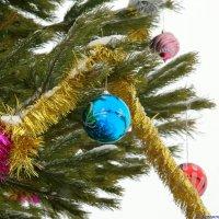 Всех католиков с Рождеством! :: Андрей Заломленков