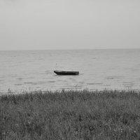 Одиночество :: Александр Терехов