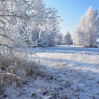 Дыхание  зимы :: Геннадий Супрун