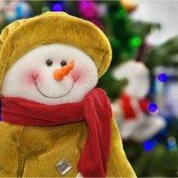 Наш домашний Снеговик! :: Василий Бобылёв