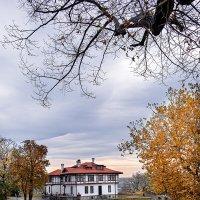 Belgrade :: Nadin
