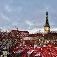 Над крышами Таллина после небольшого снегопада :: Aida10