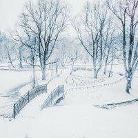 Зимний парк. :: Евгений Королёв