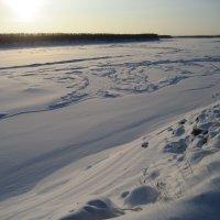 Морозное утро :: Anna Ivanova