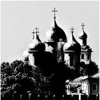 """Из альбома """"Контрасты солнечного дня"""" :: Sergey Okhotsky"""