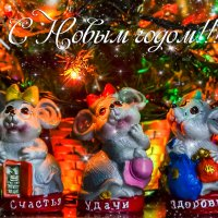 2020 - год крысы :: Iv An