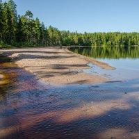 дачное озеро :: Елена Кордумова