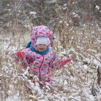 Наконец-то снежок! :: Иван Сурков
