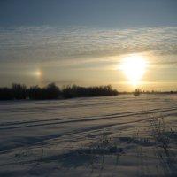 Мороз :: Anna Ivanova