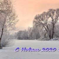 С Новым годом! :: Александр Бойченко