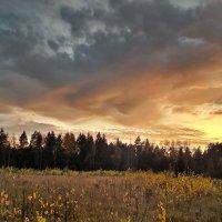 Зарисовка осеннего заката :: Лара Симонова