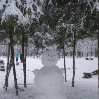 Один день московской зимы :: marmorozov Морозова