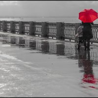 Дождливый день :: Александр Тарноградский
