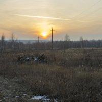 закатное солнце поздней осени :: владимир