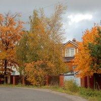 Рыжая осень :: Елена Гуляева (mashagulena)