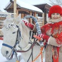 Лошадка ) :: Светлана