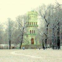 Первый снег в новом году - 1 :: Сергей