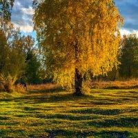 осень :: Анатолий Володин