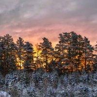 Утро из моего окна :: Анатолий Володин